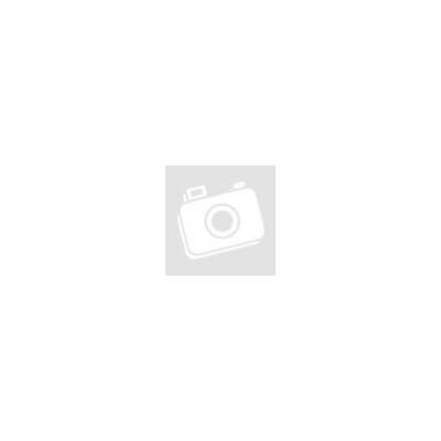 Austrotherm EXPERT FIX lábazati szigetelés 22 cm